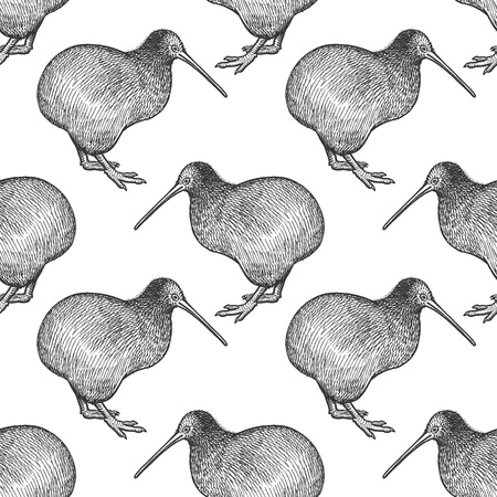 Kiwi bird. Seamless pattern with animals of Australia. Hand drawing of wildlife. Vector illustration art. Black and white. Design for fabrics, paper, textiles, fashion.