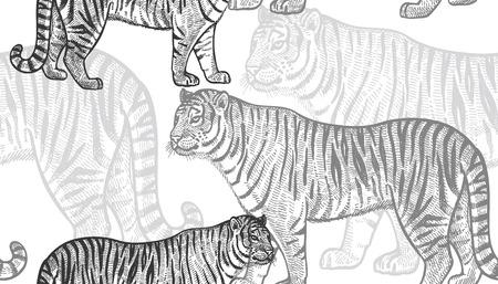Tigre. Modello senza cuciture con animali dell'Africa. Disegno a mano della fauna selvatica. Illustrazione arte vettoriale Bianco e nero. Vecchia incisione Vintage ?. Design per tessuti, carta, tessuti, moda. Archivio Fotografico - 89861173