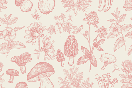 Forest plants and mushrooms seamless pattern. Flowers of clover, geranium, periwinkle, Rhodiola Rosea, Licorice Bolete, Morel and Shimeji. Hand drawing. Red and white. Vintage. Vector illustration art