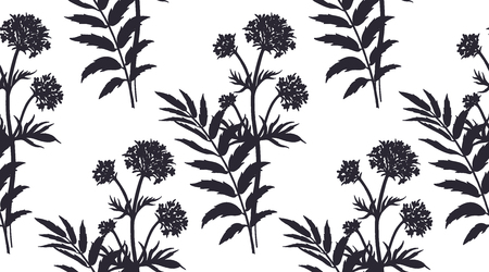 Medical herbs seamless pattern. Silhouettes of flower valerian. Vector illustration. Hand drawing. Black and white. Template for creating paper, textiles, wallpaper. Ilustração