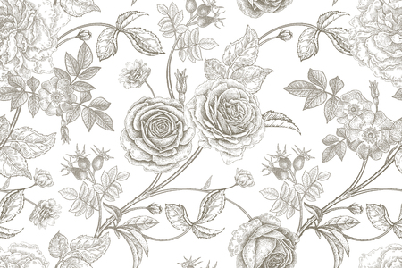 Roses, flowers, leaves, branches and berries of dog rose. Floral vintage seamless pattern.
