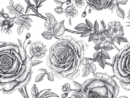 Garden roses, flowers, leaves, branches, berries of dog rose. Floral vintage seamless pattern. Black and white background. Victorian style. Vector illustration. For design textiles, paper, wallpaper.