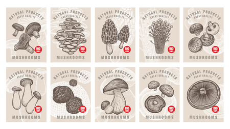 Labels with mushrooms. Set templates price tags for shops, markets of organic vegetarian food. Vector illustration art. Vintage. Hand drawing of nature objects.