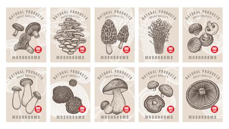 Etichette con funghi. Impostare modelli cartellini dei prezzi per negozi, mercati di alimenti biologici biologici. Arte di illustrazione vettoriale Vintage ?. Disegno a mano di oggetti naturali.