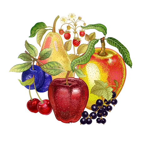 Realistic fruit decoration. Apples, cherries, black currants, pears, plums, strawberries on white background. Vector illustration art. Kitchen design. Template for signs food stores, markets, menus.
