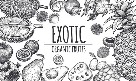 Decoration with exotic fruits and berries. Pineapple; avocado; pomegranate; lychee; durian; passion fruit; kumquat; cherimoya; dragonfruit. Black and white. Vintage vector illustration. Kitchen design Vettoriali