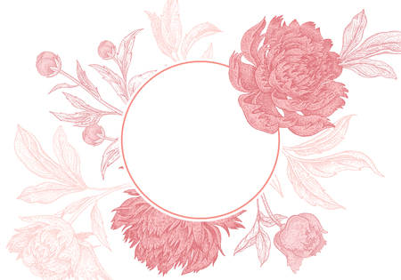 Wedding invitations cards templates. Decoration with garden flowers peonies, frame pattern. Floral vector illustration. Vintage engraving. Oriental style. Pink and white color. Фото со стока - 112223846