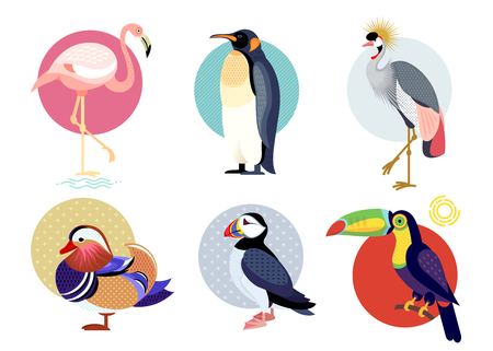 Birds puffin, mandarin duck, flamingos, toucan, penguin, bird secretary isolated on white background. Vector illustrations animals. Flat icons set. Çizim