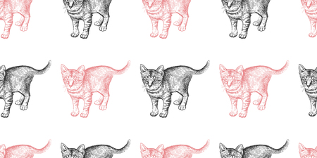 Seamless pattern with cute kittens. Home pets isolated on white background. Sketch. Vector illustration art. Realistic portraits of animal. Vintage. Black and white hand drawing of cats.
