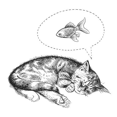Nettes Kätzchen schläft Träume von Goldfischen. Heimtier isoliert auf weißem Hintergrund. Skizzieren. Vektorillustrationskunst. Realistisches Porträt von Vintage-Gravur im Tierstil. Schwarz-Weiß-Handzeichnung der Katze