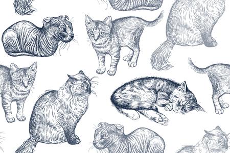 Lindos gatitos de patrones sin fisuras. Mascotas caseras aisladas sobre fondo blanco. Bosquejo. Arte de ilustración vectorial. Retratos realistas de animales. Clásico. Dibujo de gatos a mano en blanco y negro.
