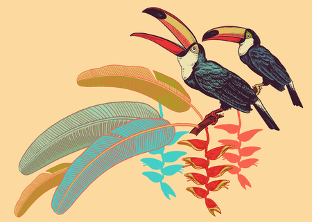 Poster with birds toucans, tropical leaves and flowers. Vector illustration. Motives of exotic nature. Vintage. Template for printing on T-shirts, summer clothes and bags, decorating shop windows.