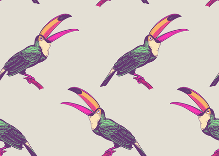 Birds toucans on white background. Seamless pattern for design paper, wallpaper, textile. Vector illustration of nature. Vintage. Hand drawing of the animals.