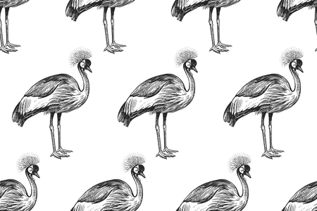 Seamless pattern with birds Crowned Crane. Vector illustration art. Vintage engraving. Black bird figures on a white background. Template for design of paper, textiles, wallpaper.