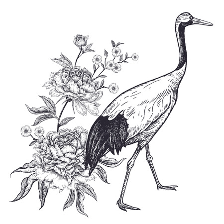 Decoration with bird and flowers. Realistic hand drawing of Japanese crane and peonies isolated on white background. Vector illustration art. Black and white sketch. Vintage oriental engraving. Stock Illustratie