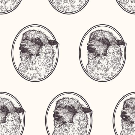 Lama. Seamless pattern with animals of South American. Hand drawing of wildlife. Vector illustration art. Black and white. Old engraving. Vintage. Design for fabrics, paper, textiles, fashion. Ilustração