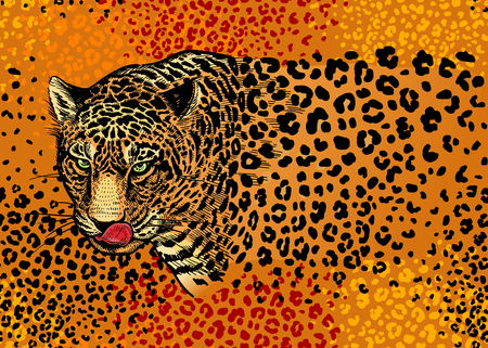 Leopards. Seamless pattern with animals of wildlife. Modern decor Beast style. Vector illustration. Template for paper, textile, wallpaper. Full color ornament. Spots and stains. Ilustrace