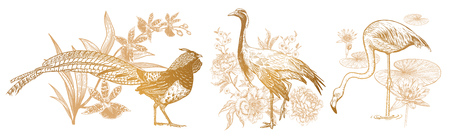 Decorations birds and flowers set. Realistic hand drawing isolated. Pheasant and orchid, Crane and peonies, flamingos and water lily. Vector illustration. Gold and white. Vintage engraving.