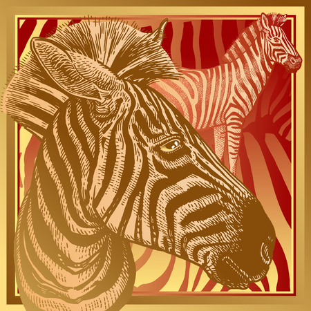 Animal print. African zebra close-up and fur stripes. Vector illustration. Print gold foil and red color on abstract background. Luxury pattern. Template for design scarf or pillow. Modern beast style