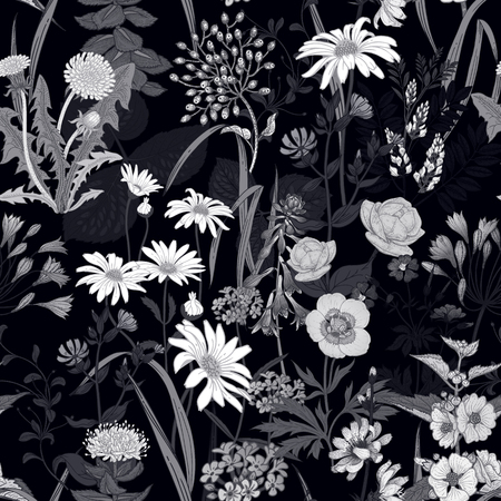 Wild flowers seamless pattern. Vector illustration. Floral background for printing on wallpaper, paper, textiles, fabrics. Hand drawing sketch. Floral decoration. Black and white. Ilustrace