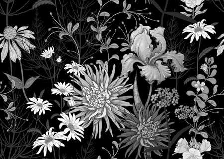 Seamless summer pattern with wild flowers chamomile, herbs, aster, iris. Floral background for printing wallpaper, paper, textiles, fabrics. Hand drawing sketch. Fashion illustration. Black and white