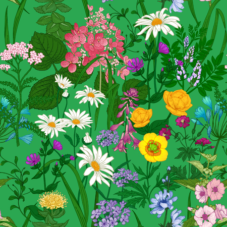 Wild flowers. Seamless summer pattern with chamomile, hydrangea, herbs, bells, dandelion. Floral background for printing wallpaper, paper, textiles, fabrics. Hand drawing sketch. Fashion illustration. Illustration