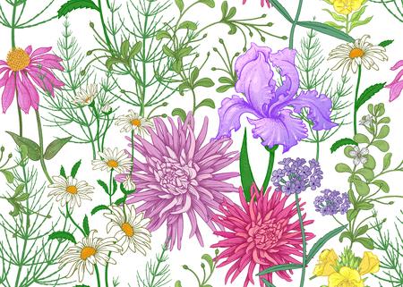 Patrón de verano sin fisuras. Flores silvestres manzanilla, hierbas, aster, iris. Decoración floral para imprimir sobre papel tapiz, papel, textiles, tejidos. Boceto de dibujo a mano. Ilustración de moda. Fondo blanco