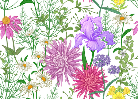 Seamless summer pattern. Wild flowers chamomile, herbs, aster, iris. Floral decoration for printing on wallpaper, paper, textiles, fabrics. Hand drawing sketch. Fashion illustration. White background