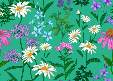 Seamless summer pattern. Wild flowers chamomile, herbs, bells. Floral decoration for printing on wallpaper, paper, textiles, fabrics. Hand drawing sketch. Fashion illustration. Blue background. Ilustracja