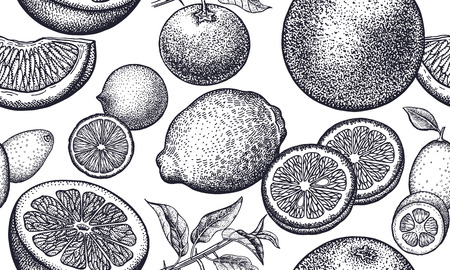 Seamless vector pattern with pomegranate fruits. Black and white illustration. Vintage engraving. Kitchen design for paper, textiles, wallpaper, interior design. Hand drawing