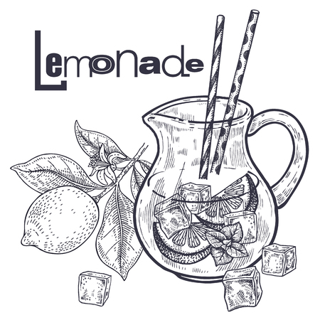 Lemonade. Vector illustration of a fruit of lemon and drink in a jug. Healthy diet food. Black and white. Hand drawing. Vintage engraving. Vettoriali