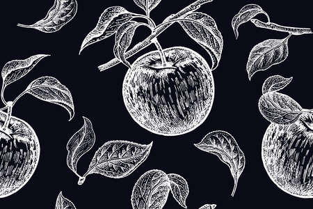 Apples. Seamless background with fruits. White chalk on black board. Vector illustration art. Vintage engraving. Realistic hand drawing. Template with nature motifs for kitchen design. Vegetarian food Illustration