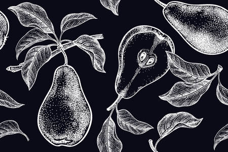 Pears. Seamless background with fruits. White chalk on black board. Vector illustration art. Vintage engraving. Realistic hand drawing. Template with nature motifs for kitchen design. Vegetarian food