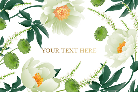 Floral card luxury pattern Delicate pastel white garden aster peonies white background Flora vintage style Vector bouquet and wreaths garden flowers Template for business cards, posters, signs, flyers Illustration