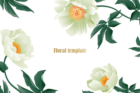Floral card luxury pattern. Delicate pastel white garden peonies on white background. Flora vintage style Vector bouquet and wreaths garden flowers. Template for business cards, posters, signs, flyers