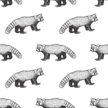 Bear red Panda. Seamless pattern with animals of China. Hand drawing of wildlife. Vector illustration art. Black and white. Old engraving. Vintage. Design for fabrics, paper, textiles, fashion.
