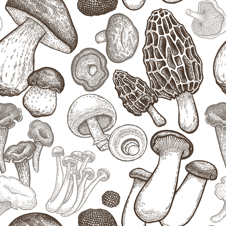 Seamless pattern with mushrooms. Hand drawing elements of nature. Vector art illustration. Black and white. Old engraving. Vintage. Kitchen design for fabrics, paper, wallpaper, packaging, wrapping.