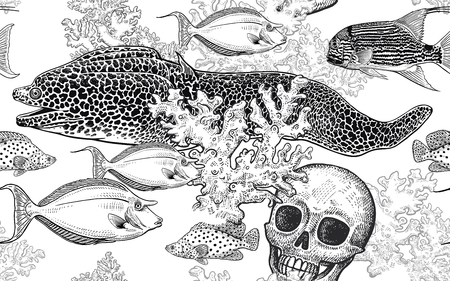 Underwater world. Seamless pattern kitchen design. Coral decorative fish, corals and human skull. Illustration of seabed. Ocean floor. Vector. Vintage engraving. Black and white. Hand Sketch Stock Illustratie