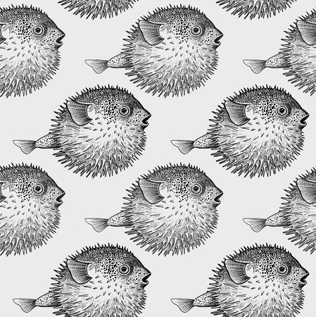 Seamless vector pattern with fish hedgehog under water. Sea bottom and animals. Vintage engraving art. Hand drawing sketch. Kitchen design with seafood for paper, fabrics, wallpaper. Black and white