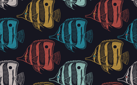 Seamless vector pattern with  decorative fish under water. Sea bottom and animals. Vintage engraving art. Hand drawing sketch. Kitchen design seafood for paper, fabrics, wallpaper. Black background Archivio Fotografico - 118430324
