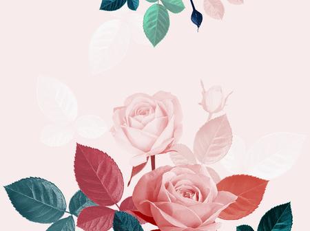 Floral card. Flowers roses pink background. Floral template for design wedding invitations, greetings, business card, decoration floral shops, packaging, shop windows, signboards. Vintage illustration