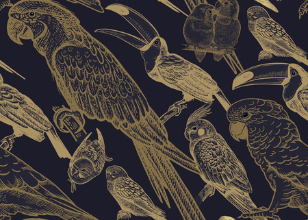Tropical birds. Parrots and toucans. Seamless vector background. Wildlife pattern. Retro vintage. Old engraving style. Pattern for paper, wallpaper, textile, Hawaiian shirts. Black and gold foil.