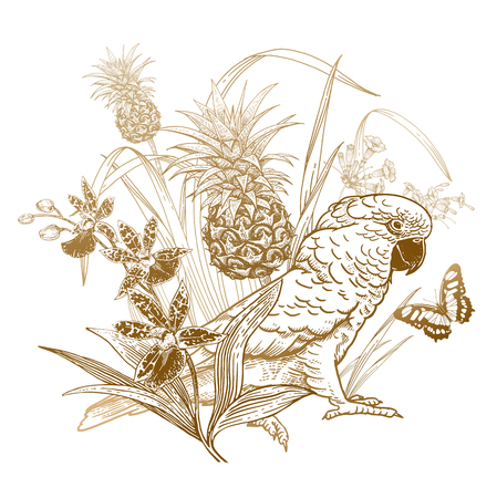 Parrot, butterfly, orchid flower, pineapple plant. Bird and fruit. Tropical decoration. Wildlife pattern. Gold foil on white background. Vintage engraving. Template for t-shirts, bags, posters
