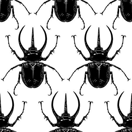 Insect beetle isolated on white background. Seamless pattern. Black and white sketch. Realistic drawing bug. Vector illustration. Stok Fotoğraf - 120598442