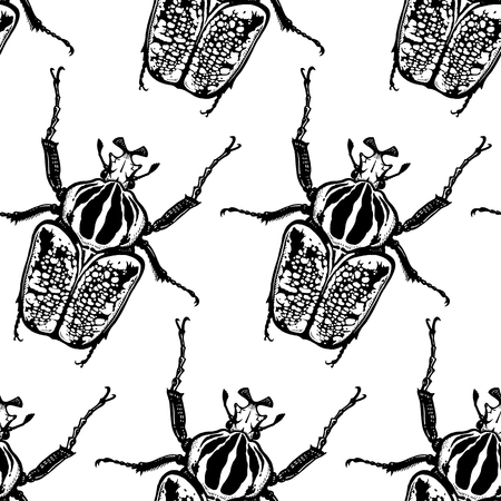 Beetles Goliath on a white background. Seamless pattern with insects. Black and white sketch. Realistic drawing bug. For fabrics, summer textiles, wallpaper, paper Çizim