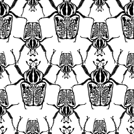 Beetles Goliath on a white background. Seamless pattern with insects. Black and white sketch. Realistic drawing bug. For fabrics, summer textiles, wallpaper, paper Иллюстрация