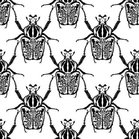 Käfer Goliath auf weißem Hintergrund. Nahtloses Muster mit Insekten. Schwarz-Weiß-Skizze. Fehler beim realistischen Zeichnen. Für Stoffe, Sommertextilien, Tapeten, Papier