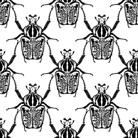 Beetles Goliath on a white background. Seamless pattern with insects. Black and white sketch. Realistic drawing bug. For fabrics, summer textiles, wallpaper, paper Illustration