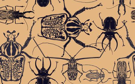 Schwarze Käfer auf Goldgrund isoliert. Nahtloses Muster mit Insekt. Skizze des Fehlers. Realistische Zeichnung. Vektor-Illustration. Vektorgrafik