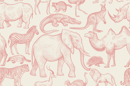 Animals of wild world seamless pattern. Elephant, giraffe, kangaroo, tiger, lemur, ostrich, lion, crocodile, zebra, camel, rhinoceros, echidna, antelope, platypus, raccoon, ostrich. Red, white. Vector